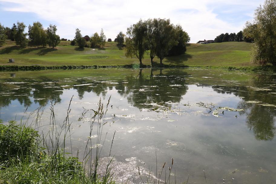 Golf_Mont_Griffon_045 copie