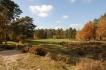 golf_de_fontainebleau_trou5